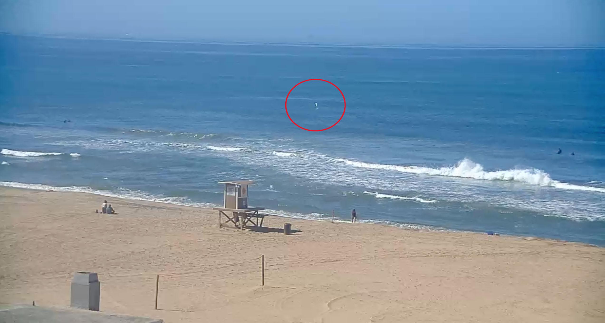 Watch: Juvenile Shark Breaches in SoCal