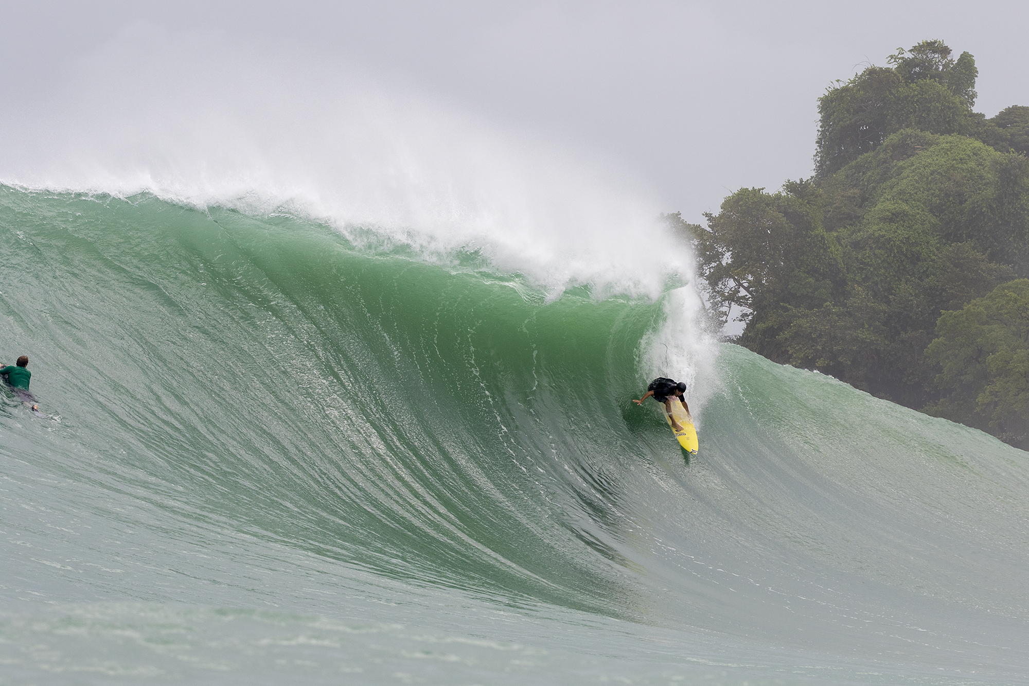 Panama, Bocas del Toro, Silverbacks, Luke Davis, Red Frog Bungalows, Koa Smith, Michael Dunphy, Andrew Jacobson, Travel,